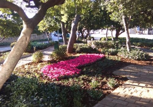 Hortikulturno uređenje parka Bad Homburg